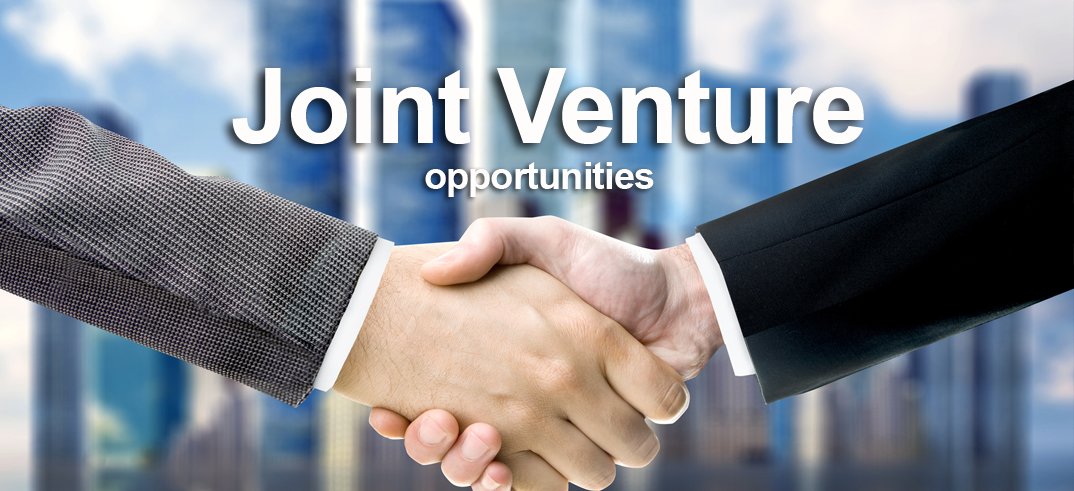 how to use venture in a sentence